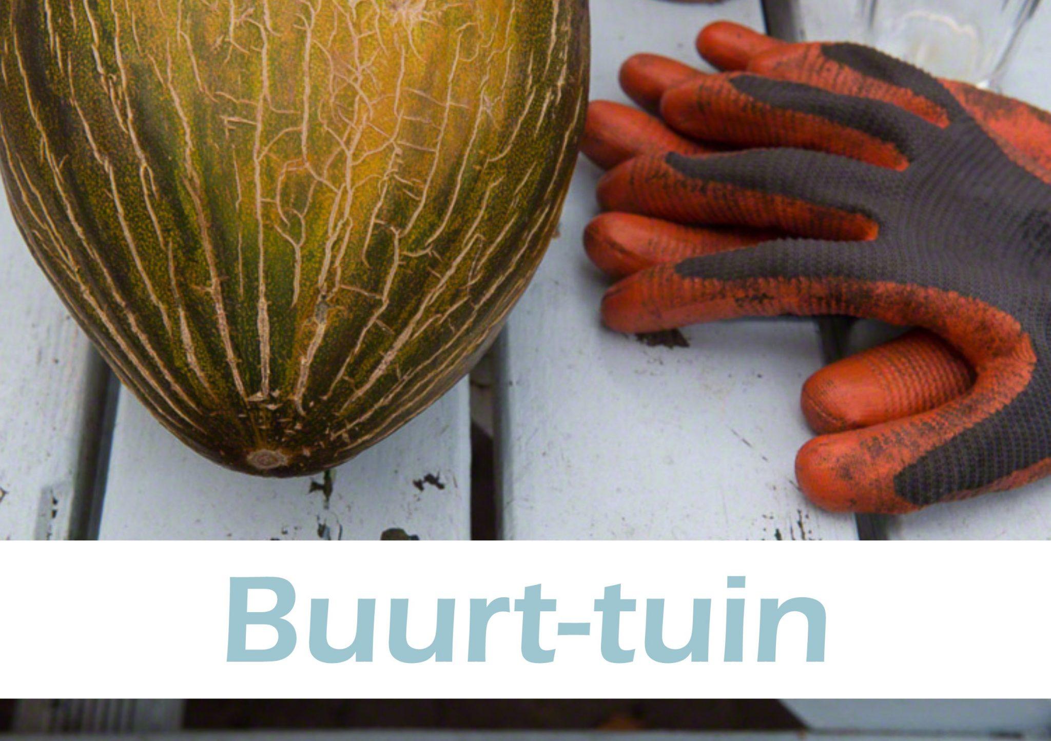 Geloven in Moerwijk Buurt-tuin Wat we doen